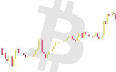 Trading Bitcoin: tutorial para el próximo halving